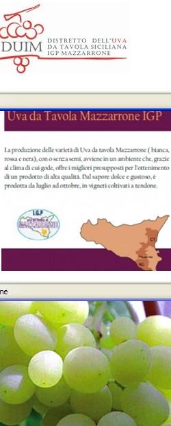 Sicilydistrict news italian districts grappoli uva - Uva da tavola di mazzarrone ...